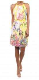 Roberto Cavalli Printed Day Dress